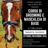 Corso gratuito di Grooming e Mascalcia